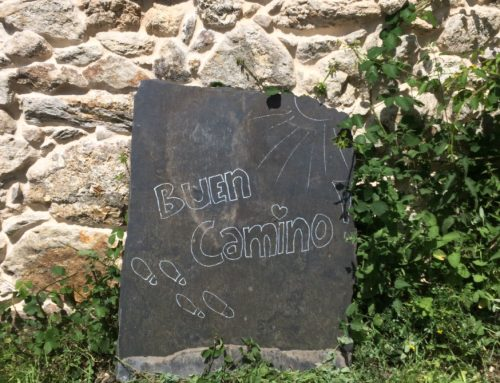 Walking the Camino for CUMH